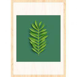Cuadro de Madera Impresa - Compund Leaf