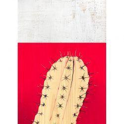 Cuadro de Madera - Cactus Rojo