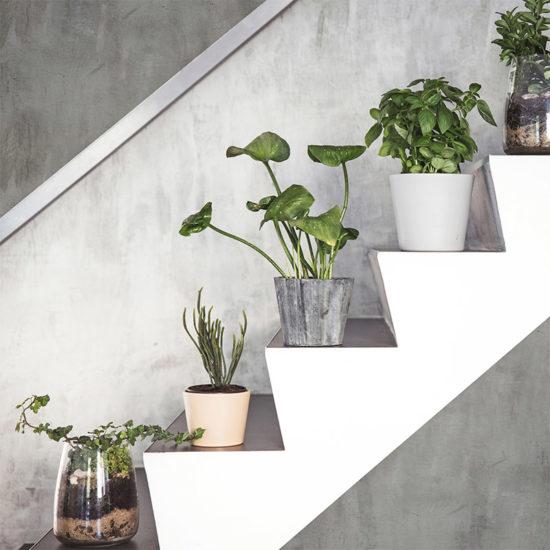 vinilo decorativo Cemento Grey Escaleras
